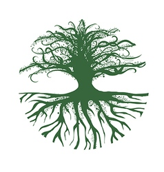 Magic Round Tree Logo vector image vector image