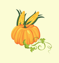 Pumpkin with two corn cobs in green leaves autumn vector