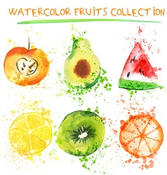 Watercolor fruit set vector