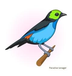 Paradise tanager bird educational game vector