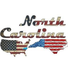 Usa state of north carolina on a brick wall vector