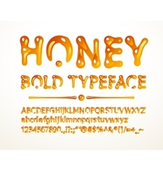 Honey bold typeface vector