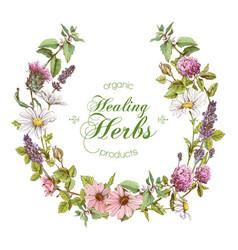 herbal wreath vector image vector image