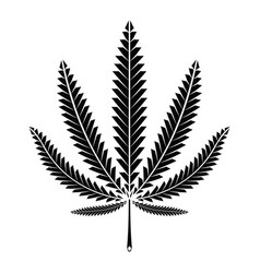 cannabis marijuana leaf vector image
