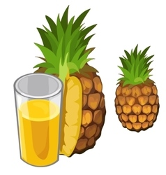 Pineapple juice and fruit drinks isolated vector image vector image