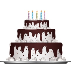 Sweet birthday cake vector image