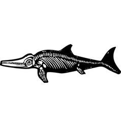 Ichthyosaur dinosaur fossil vector