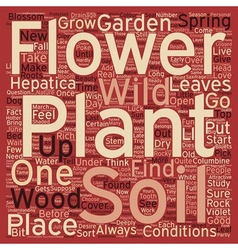 Wild flower garden text background wordcloud vector
