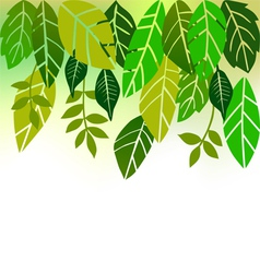 Leaves collection for designers vector image