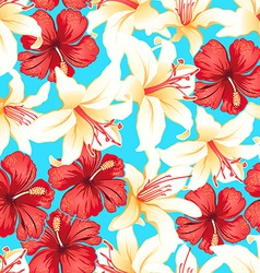 Red white and yellow tropical hibiscus flowers vector
