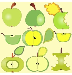 Apples collection vector