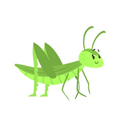 Cute cartoon green grasshopper character vector