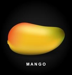 Mango fruit isolated on black background vector image vector image