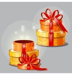 Gift box on a gray background open and closed vector image