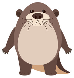Cute otter on white background vector
