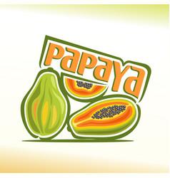 papaya still life vector image vector image