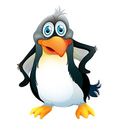 A penguin vector image