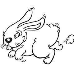 black and white rabbit vector image