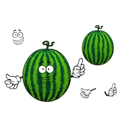 Green striped cartoon watermelon fruit vector