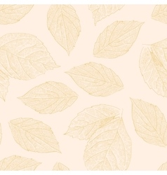 Seamless pattern with hand drawn rose leafs vector