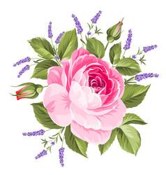 wedding flowers bouquet vector image
