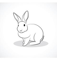 Rabbit c vector