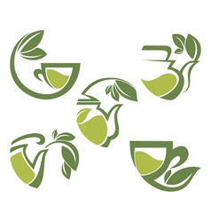Warm herbal tea vector