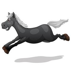 Black horse vector image vector image