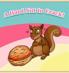 Hard nut to crack vector image