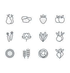 Harvest farm icons set linear style vector
