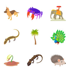 indian animal icons set cartoon style vector image