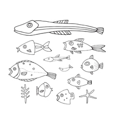 Lovely hand drawn fish collection vector