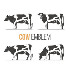 set of a stylish spotted holstein cows vector image vector image