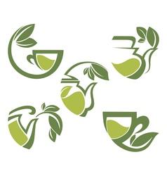 warm herbal tea vector image