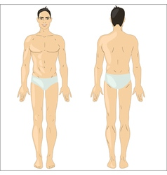 Asian man in underwear vector