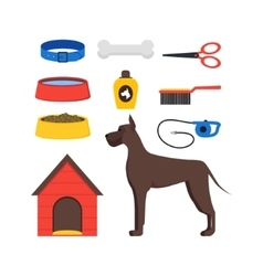 Cartoon Dog Equipment Set vector image