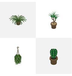 Isometric plant set of houseplant peyote plant vector
