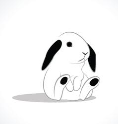 Rabbit white vector