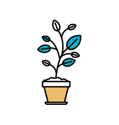 color sections silhouette of plant in flower pot vector image