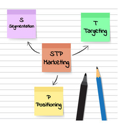 stp marketing diagram - sticky notes vector image vector image