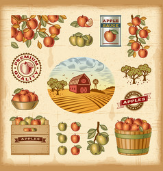 Vintage colorful apple harvest set vector image