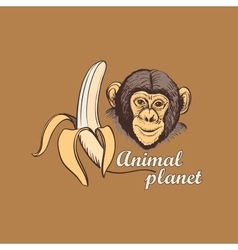 Animal planet logo symbol for your design vector