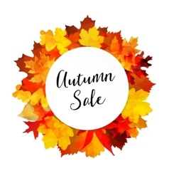Autumn fall sale banner with colorful leaves vector image vector image