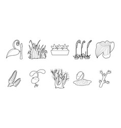 plant icon set outline style vector image
