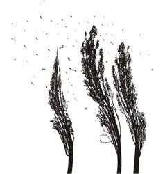 Poplars in the wind vector image