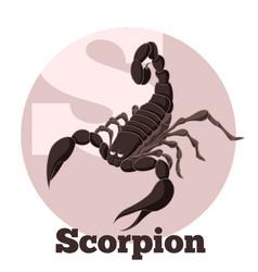 Abc cartoon scorpion vector