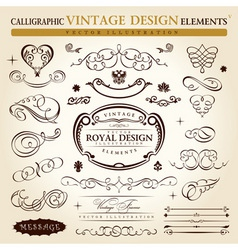 Calligraphic elements vintage ornament set vector vector