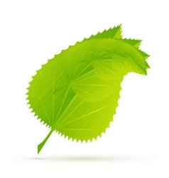 modern leaves vector image