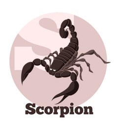 Abc cartoon scorpion vector
