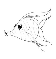 animal outline for fish vector image vector image